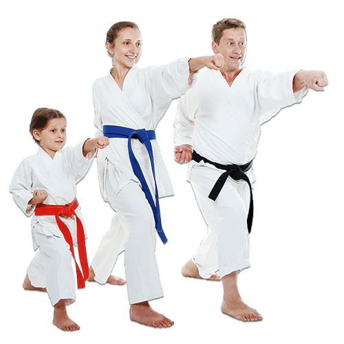 Martial Arts Lessons for Families in Naperville IL - Man and Daughters Family Punching Together