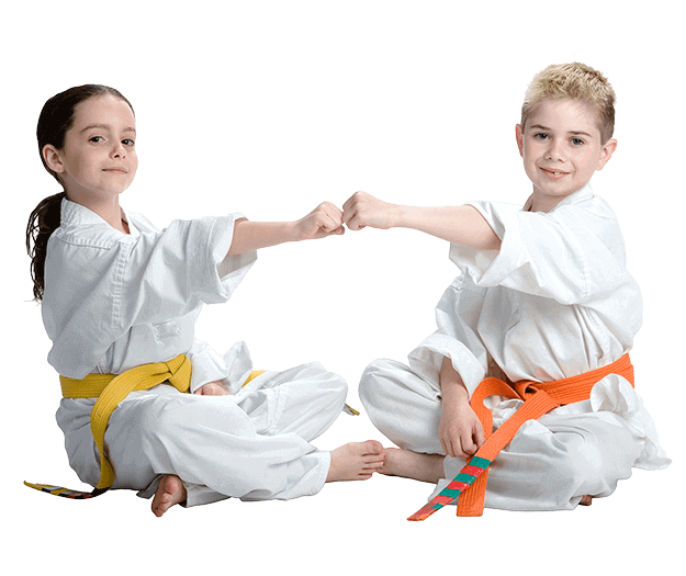 Martial Arts Lessons for Kids in Naperville IL - Kids Greeting Happy Footer Banner