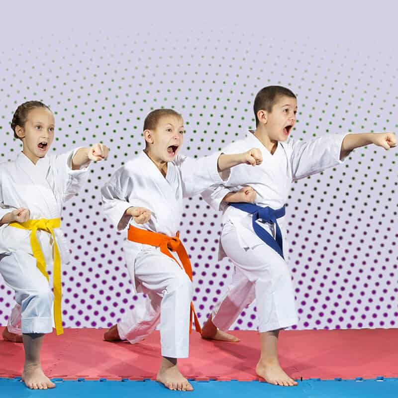 Martial Arts Lessons for Kids in Naperville IL - Punching Focus Kids Sync