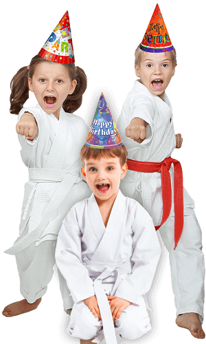 Martial Arts Birthday Party for Kids in Naperville IL - Birthday Punches Page Banner